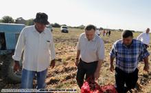 Մարզպետն այցելել է  Արտիմետ համայնքի գյուղացիական տնտեսություններ