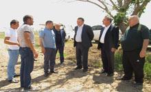 Արմավիրի մարզում մեկնարկել է «Բամբակի մշակման և վերամշակման» ծրագիրը
