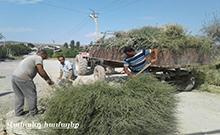 Արմավիրի մարզում «Մաքուր Մոլորակ» շաբաթօրյակի շրջանակներում իրականացվել են համատարած մաքրման և բարեկարգման աշխատանքներ