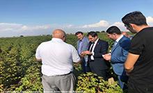 Աշխատանքային այցով Արմավիրի մարզում է եղել ՀՀ տարածքային կառավարման և զարգացման նախարարը