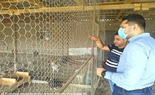 Մարզպետ Համբարձում Մաթևոսյանն այցելել է «Ինտերնացոնալ» կոչվող թռչնանոց